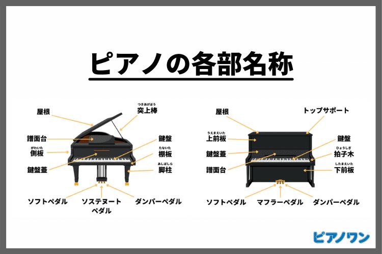 ピアノの各部名称|パーツごとに解説【図解】